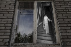 6-Window-web-1024x682